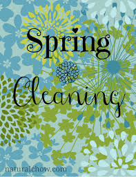 spring cleaning 12 homemade all natural cleaners natural chow