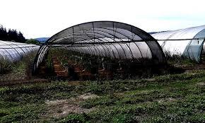 chambre agriculture var pays de fayence une communauté du var agriculture eau et
