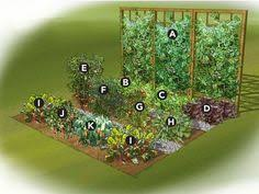 Vegetable Garden Designs Layouts Vegetable And Herb Garden Layout Kitchen Garden Designs
