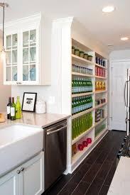 Kitchen Cabinets Pantry Ideas 102 Best Storage Ideas Images On Pinterest Kitchen Ideas Pantry