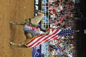 Horse With American Flag Happy To Be Back In Texas Miss Rodeo Texas Blog