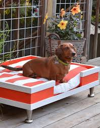 diy modern pet bed centsational style