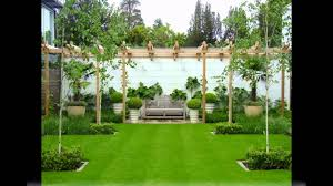 best garden trees ideas for small gardens