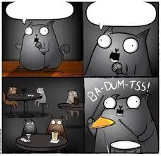 Ba Dum Tss Meme - ba dum tss cat blank template imgflip