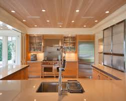 2016 contemporary kitchen interior with modern ceiling