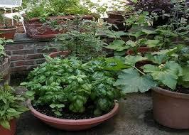 Container Vegetable Gardening Ideas Vegetable Container Garden Ideas Webzine Co
