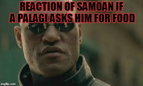 Samoan Memes - matrix morpheus meme imgflip
