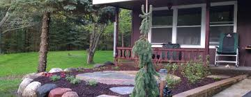 Landscaping Lawn Care by Lawn Care Snow Removal Minnesota