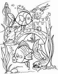 printable 28 tropical fish coloring pages 5108 tropical fish