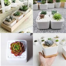 list manufacturers of square plant pot buy square plant pot get