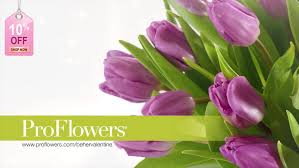 Flowers Com Coupon Code 100 Pro Flowers Promo Codes Proflowers Coupon Code 2016