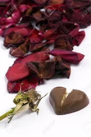 a withered red rose with a small heart chocolate broken