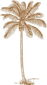 palm tree wedding invitations brown palm tree for wedding invitation clip at clker