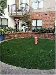 backyards cool 25 best ideas about backyard dog area on