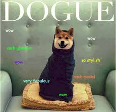 So Doge Meme - doge meme the best of doge