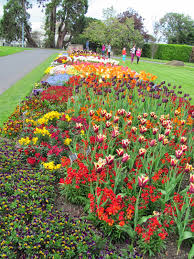 National Botanic Gardens Dublin by The Narcissistic Expat Diaries From Iowa To Ireland National