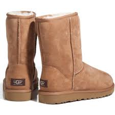 buy ugg boots macy s uggs polyvore