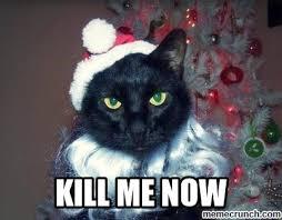 Please Kill Me Meme - please kill me now meme bigking keywords and pictures