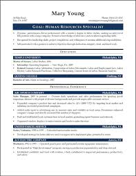 resume summary statement example resume human resources resume summary human resources resume summary photo large size