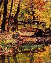 12 spots watch leaves change ohio fall u2014 ohio