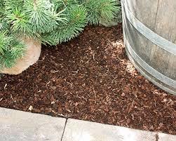 ob bodendeckerpflanzen rindenmulch oder kiesbeet anlegen native