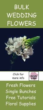 discount flowers bulk discount flowers buying peonies for weddings read this