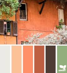 284 best design seeds color inspo images on pinterest color