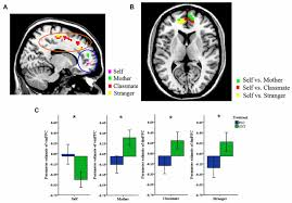 frontiers oxytocin increases the perceived value of both self