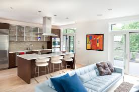kitchen and lounge design combined