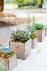 set of 4 5x5 succulent planter box redwood by thegrowingwall