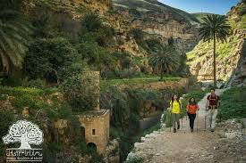 new documentary introduces tourists to palestinian nature from