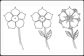 drawings of flowers for beginners when drawing flowers becomes a