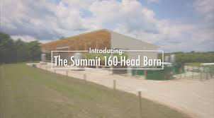 Cattle Barns Designs Dean Gangwer Talks About Why He Chose A 160 Head Barn To Finish