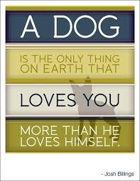 boxer dog sayings 500 best dogs verses 1 images on pinterest animal quotes dog