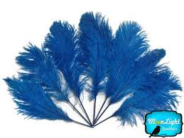 moonlight feathers ostrich feathers turquoise blue ostrich feathers 10 pieces
