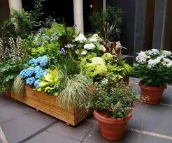 Low Maintenance Backyard Ideas 136 Best Garden Design Ideas Images On Pinterest Garden Design