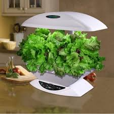 indoor hydroponic system how to grow hydroponic plants mini garden