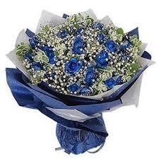 blue roses delivery 19 blue roses blue roses deliver to express blue at china