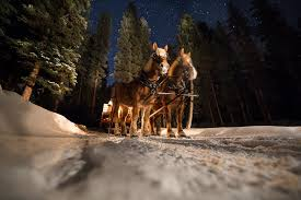 sleigh ride dinner lone mountain ranchlone mountain ranch