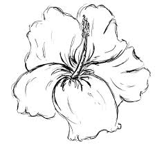 Flowers Designs For Drawing 349 Best Tattoos Female Images On Pinterest Drawings Projects