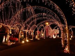 christmas lights in rock hill sc nc bed and breakfast near amazing christmas light show in windsor nc