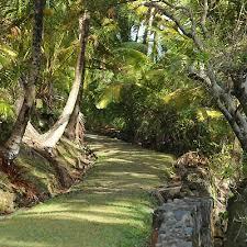 Very Beautiful In French Devil U0027s Islands French Guiana Photos Worldatlas Com