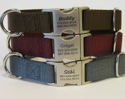 tuesday collar etsy dog id collar etsy