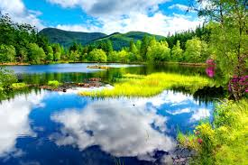 blue reflections wallpapers lake grass mirrored amazing greenery clear cabin nature river