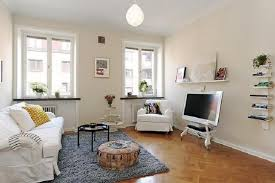 decorate small apartment living room pleasing outstanding