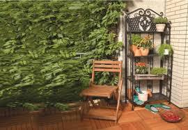 balkon grã npflanzen balkonpflanzen unbegrenzte möglichkeiten für hobbygärtner