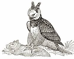 harpy eagle hunt coloring page eagle coloring pages pinterest