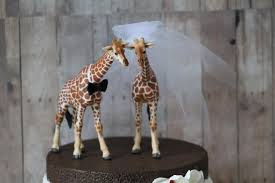 Country Chic Wedding Giraffe Wedding Cake Topper Bride And Groom Rustic Country