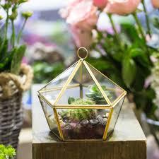 popular mediterranean flower pots buy cheap mediterranean flower modern glass geometric terrarium five sides tabletop succulent fern moss plant display terrarium box planter bonsai