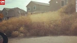 Tumbleweed Tumbleweeds Take Over Colorado Neighborhoods Cnn